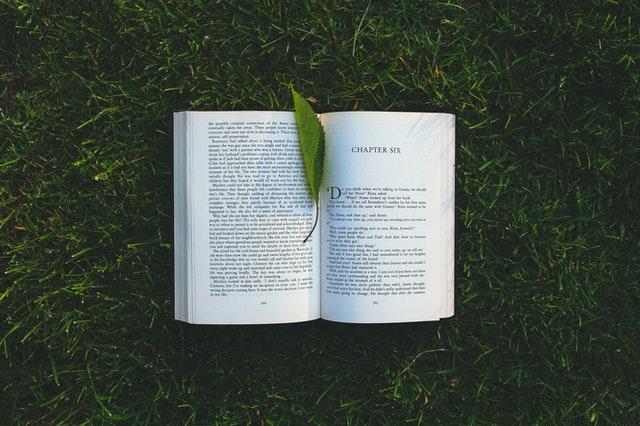 resensi buku perpustakaan ajaib bibbi bokken, download perpustakaan ajaib bibbi bokken, perpustakaan ajaib bibbi bokken pdf, review buku perpustakaan ajaib bibbi bokken